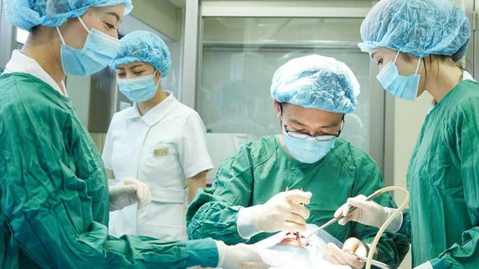 精密根管治療を行っている男性歯科医師